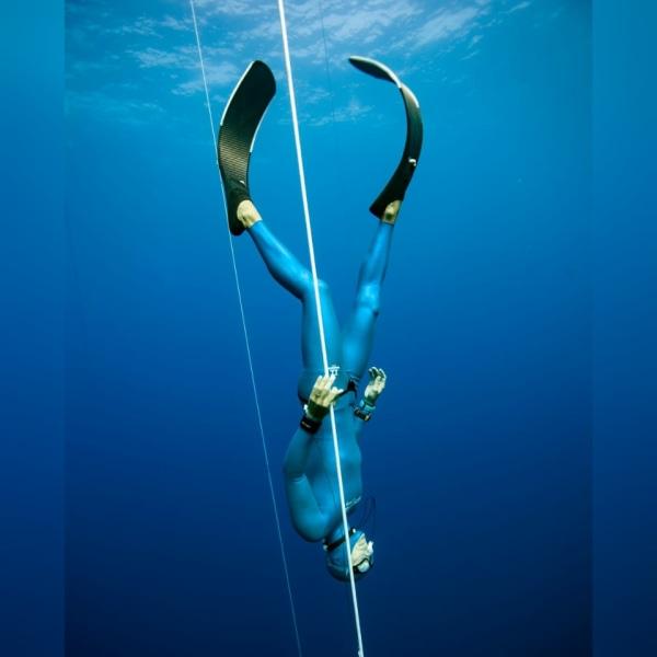 Manta Diving Madeira Events 2021