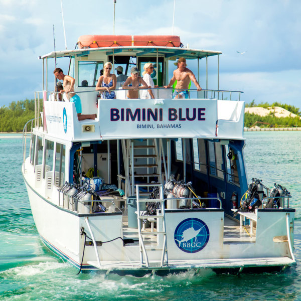 Bimini Big Game Club Dive Center