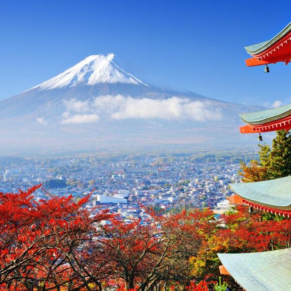 Natur & Kultur - Mt. Fuji, Kyoto, Nara
