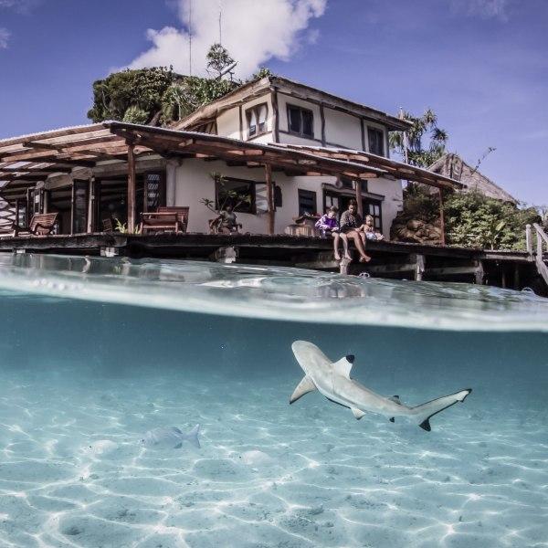 Misool Dive Center