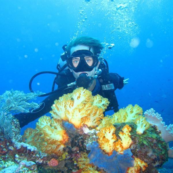 Komodo Resort Diving Club