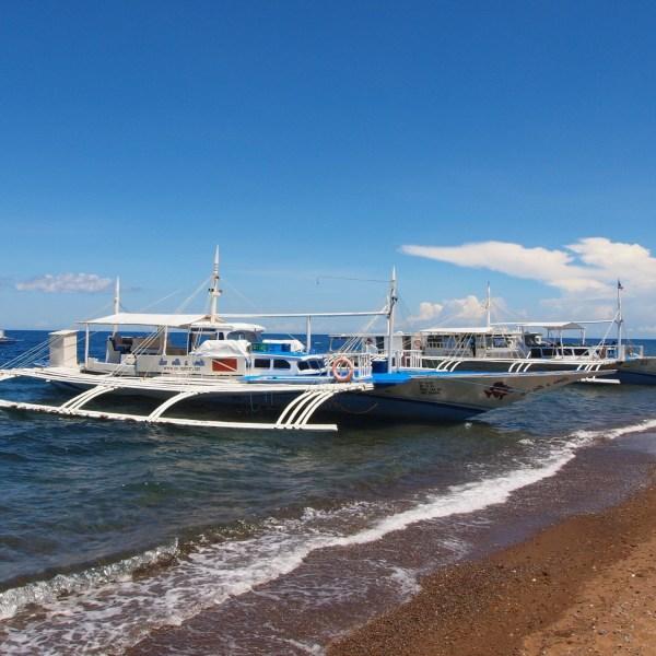 Sea Explorers Dumaguete