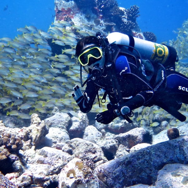Octopus Diving Center Praslin
