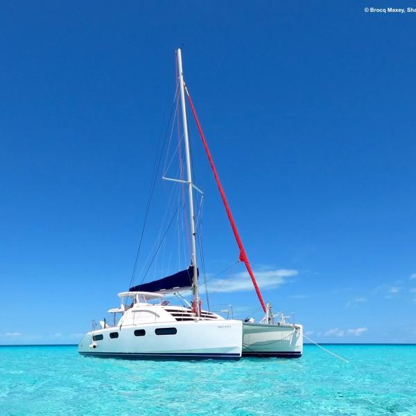 Tauchsafari Bahamas 2021 - powered by extratour Tauchreisen