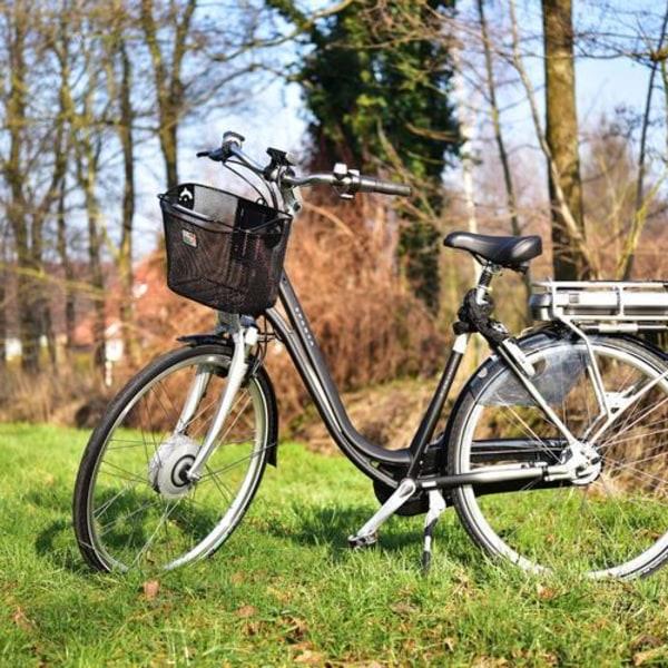 E-Bike-Spaß im Kaufunger Wald