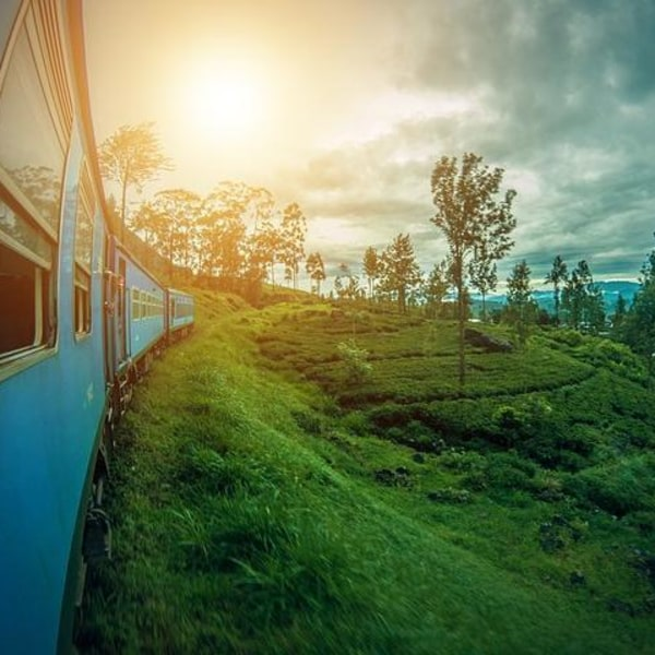 "Privatrundreise ""Sri Lanka Adventure"" & Baden auf den Malediven"