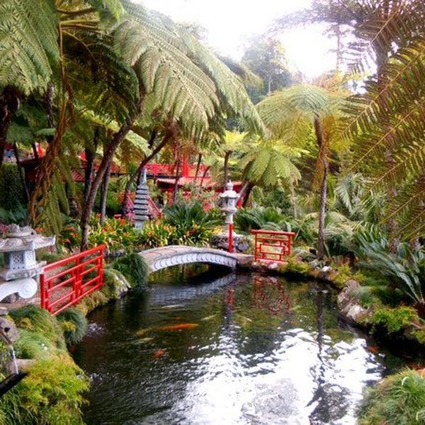 """Madeira- """"die Blumeninsel"""""""