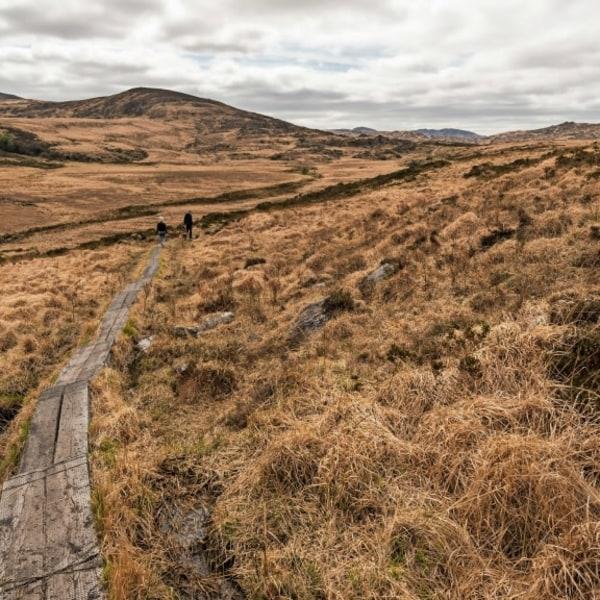 Wanderreise Irland - Der Kerry Way