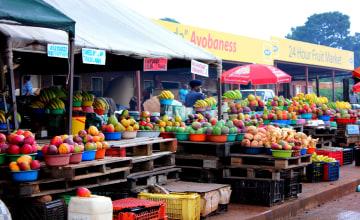 Südafrika_Fruit_Market_Hüster_1996.JPG