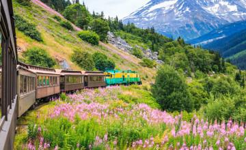 Skagway_Alaska_White Pass_Yukon_Route_Railroad_123RF_67262815_s.jpg