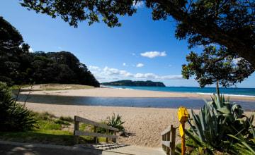 Warmwasser Strand Neuseeland_Coromandel_123RF_50052580_s.jpg