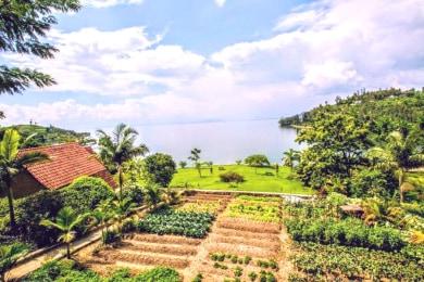 Paradise Kivu Resort