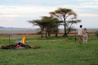 African View Camp
