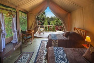 Rhino Watch Safari Lodge