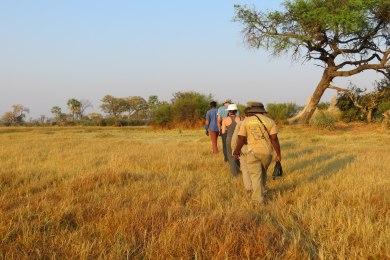 Okavango Delta Bush Walk