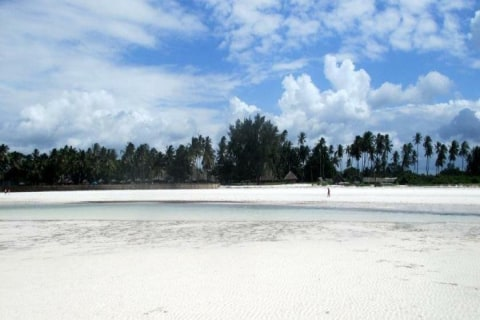 Diani Beach.jpeg
