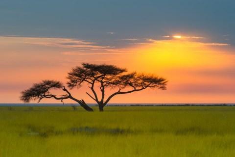 Etosha Sonnenuntergang
