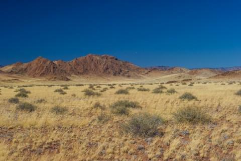 Kalahari Gegend