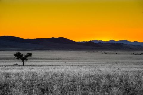Die Namib Wüste bei unserer Wanderreise