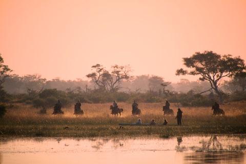 Okavango Horse safaris4.jpg
