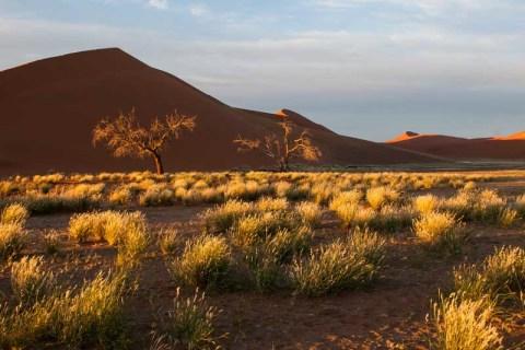 Sossusvlei Landschaft