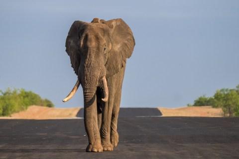 Suedafrika Bilder