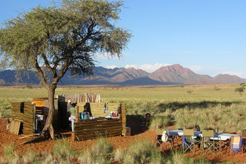 Tok Tokkie Trails Namibia Rast.jpg