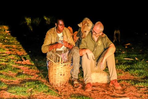 Der Hyänenmann in Harar