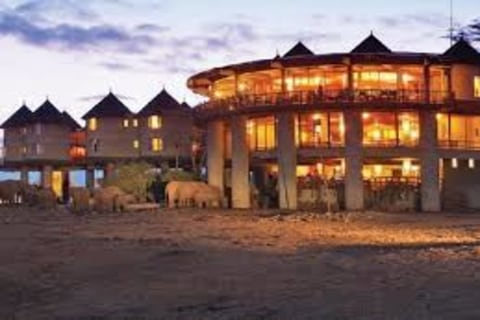 sarowa salt lick Lodge