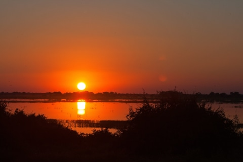 Chobe Abendsonne