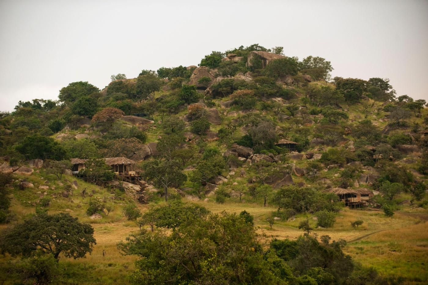 Areal des Lamai Serengeti