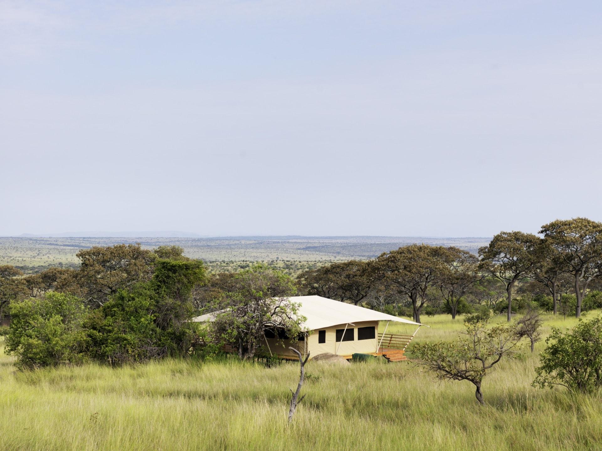 Lage des Serengeti Bushtops