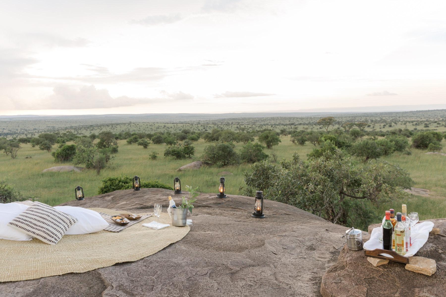 Picknick in der Wildnis der Serengeti