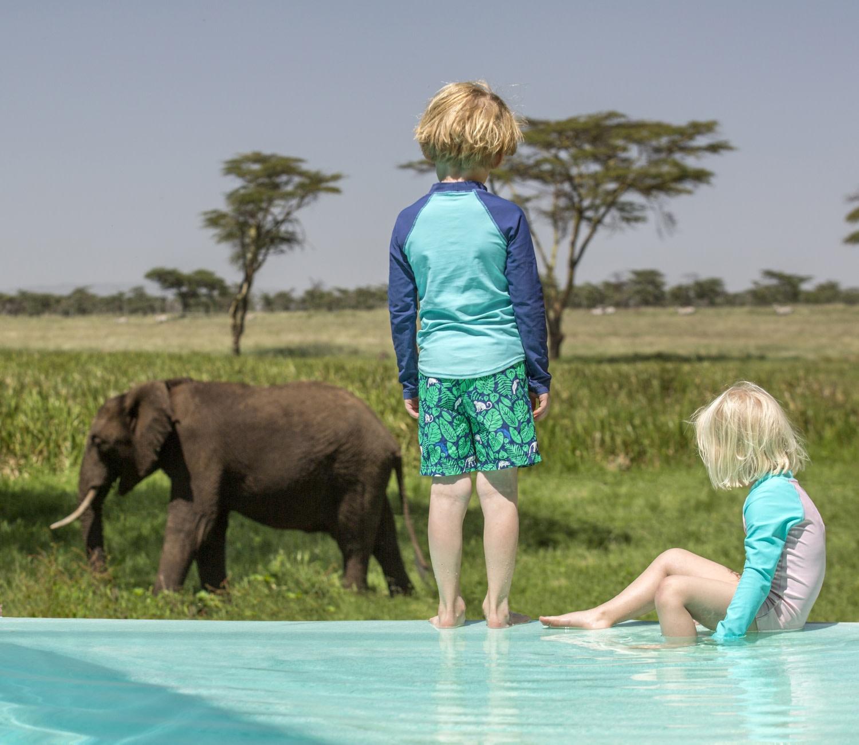 Kinder beobachten Elefanten vom Pool der Sirikoi Lodge