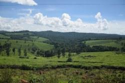 Uganda 1000 Hügel