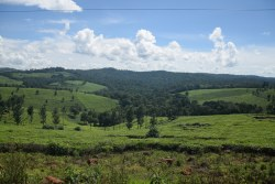 uganda-rundreise-ruanda