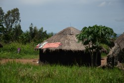 Dorf Uganda nahe Kidepo Nationalpark
