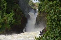 Weisser Nil-murchison nationalpark-ruanda