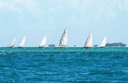 Sailing-zanzibar