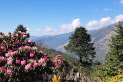 trekking-taksindu-nepal-meineweltreisen