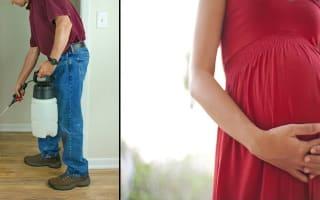 ריסוס בבית בהריון