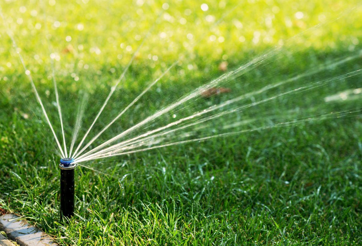 מערכת השקיית דשא