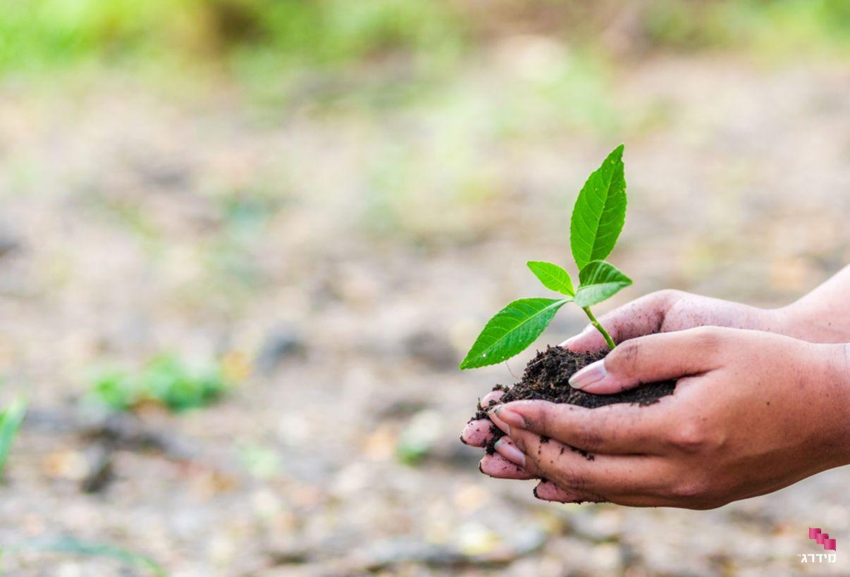 חשבונית ירוקה - שומרת על איכות הסביבה