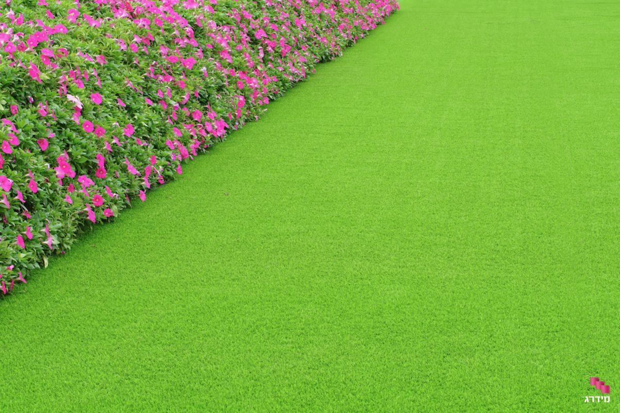 עיצוב גינה עם דשא סינטטי