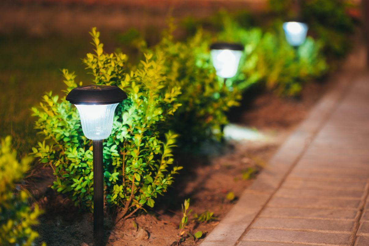 גופי תאורה בגינה