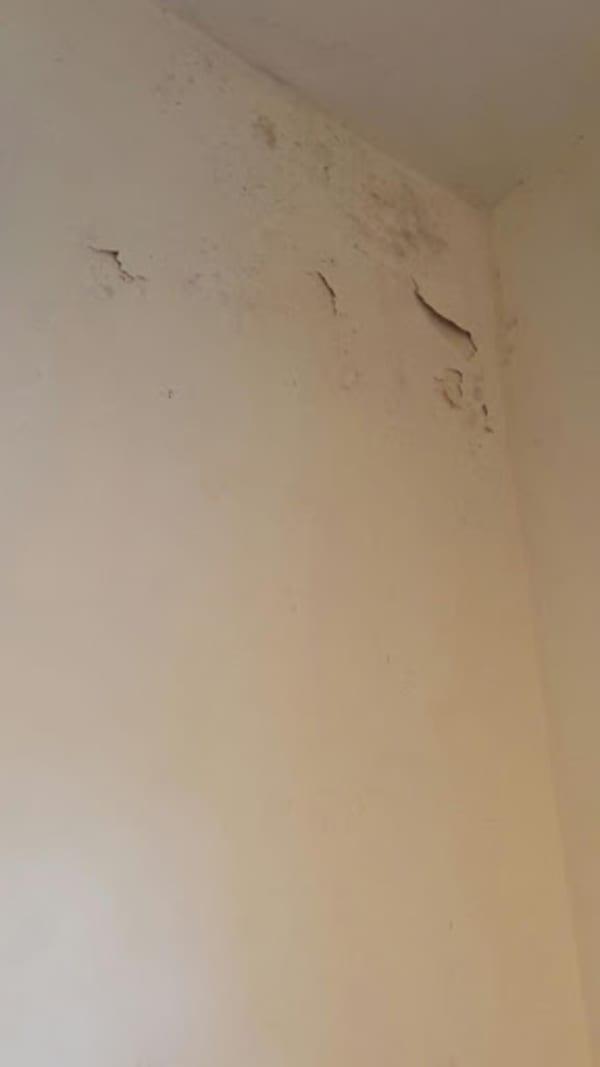 הקיר לפני התיקון
