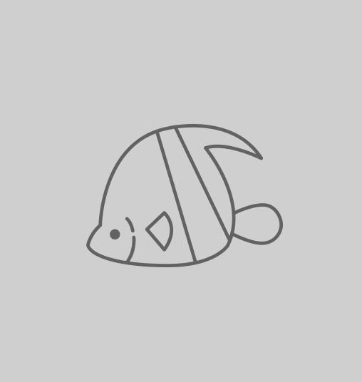 Animo - Aquarium complet