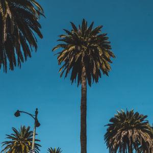 explore san diego california rent an rv
