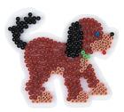Piggplate hund