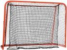 Floorball match goal  IFF godkjent